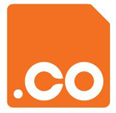cyber squatting .co domain names